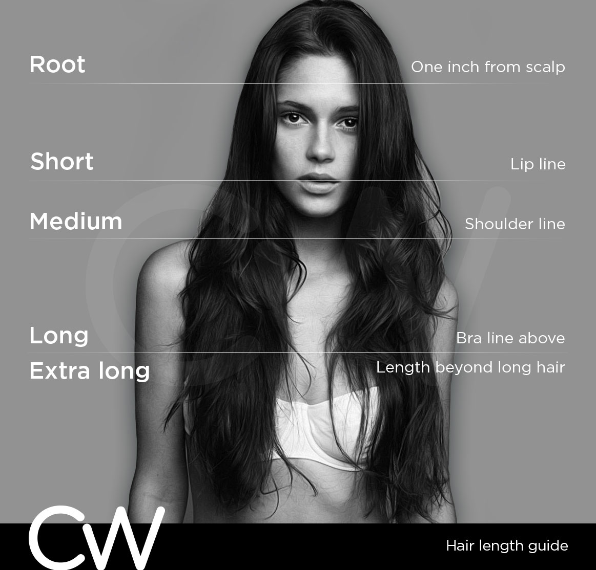 Hair Length Guide Catwalk Salon Gladesville Australia